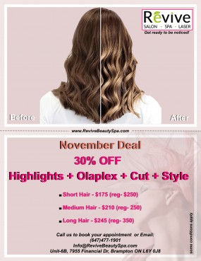 Revive November Promotion - Highlights